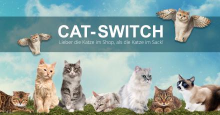 Cat-Switch - Unser neues Modul für Ihren Shop